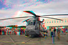 2687 CH-124 Sea King Helicopter Anaglyph