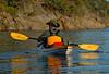 4730 Jay paddling away